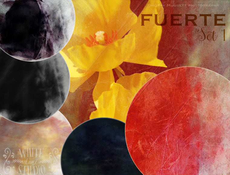 Fuerte textures collection image