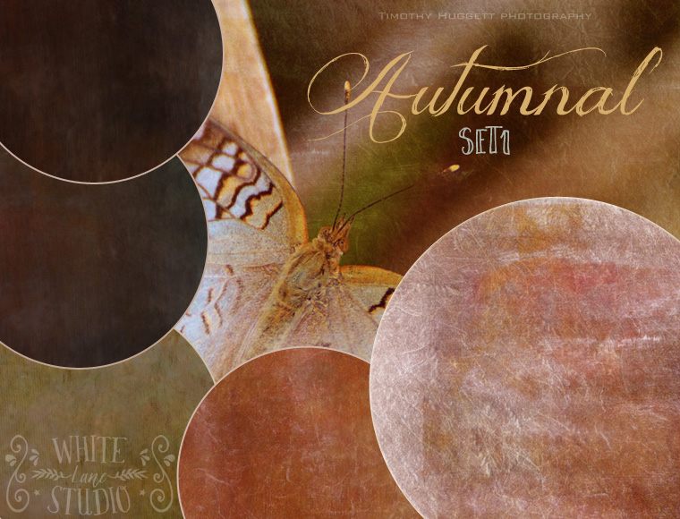 WLS Autumnal Photoshop Textures Set 1